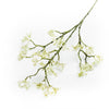 White Blossom Branch