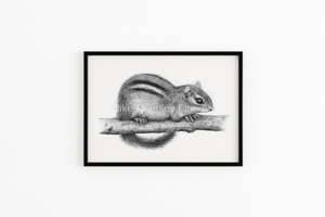 """Branching Out for Nuts"" - Giclée Print"