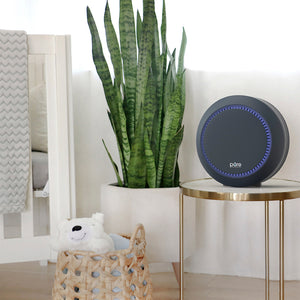 PureZone™ Halo True HEPA Air Purifier - Graphite