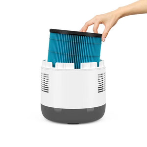 MistAire™ Eva 4-Speed Evaporative Humidifier