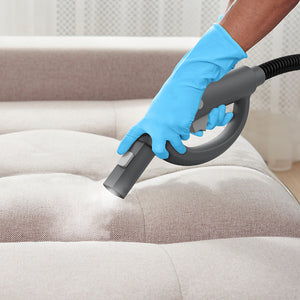PureClean XL Rolling Steam Cleaner