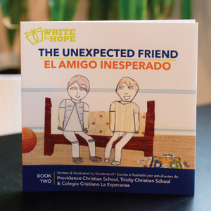 Write to Hope Book: The Unexpected Friend