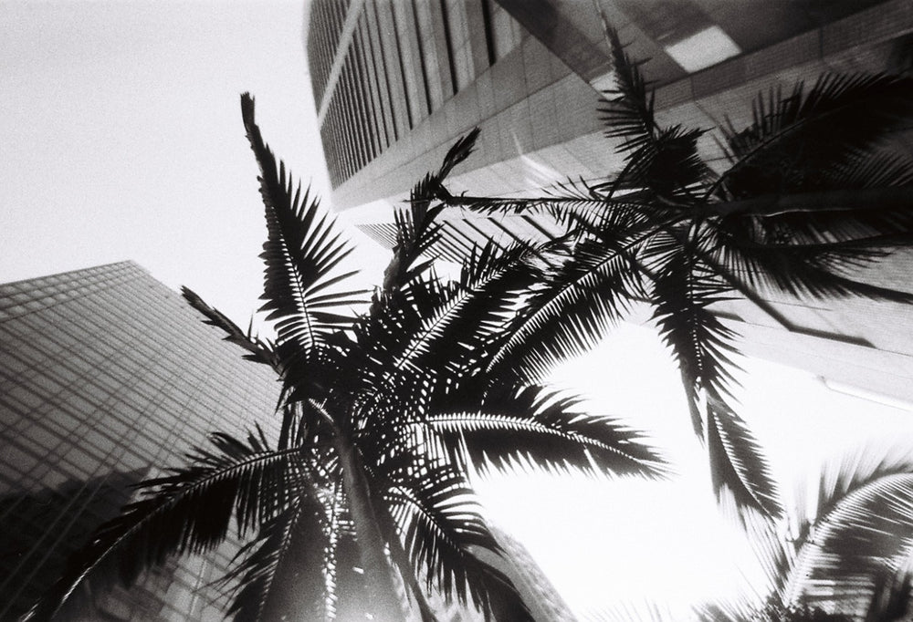 Simple Use Disposable Film Camera // Black & White