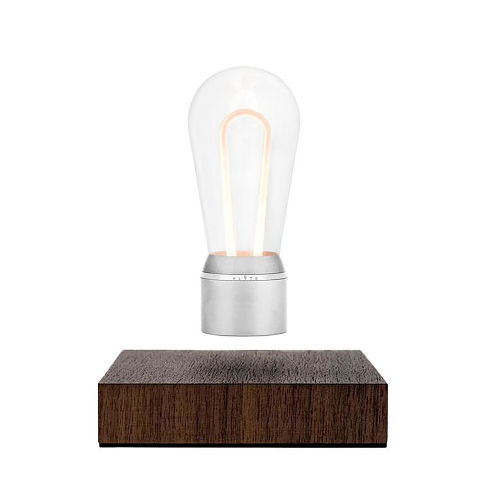 FLYTE Nikola Floating Bulb