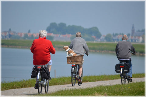 Active lifestyle and social support promotes healthy brain aging.