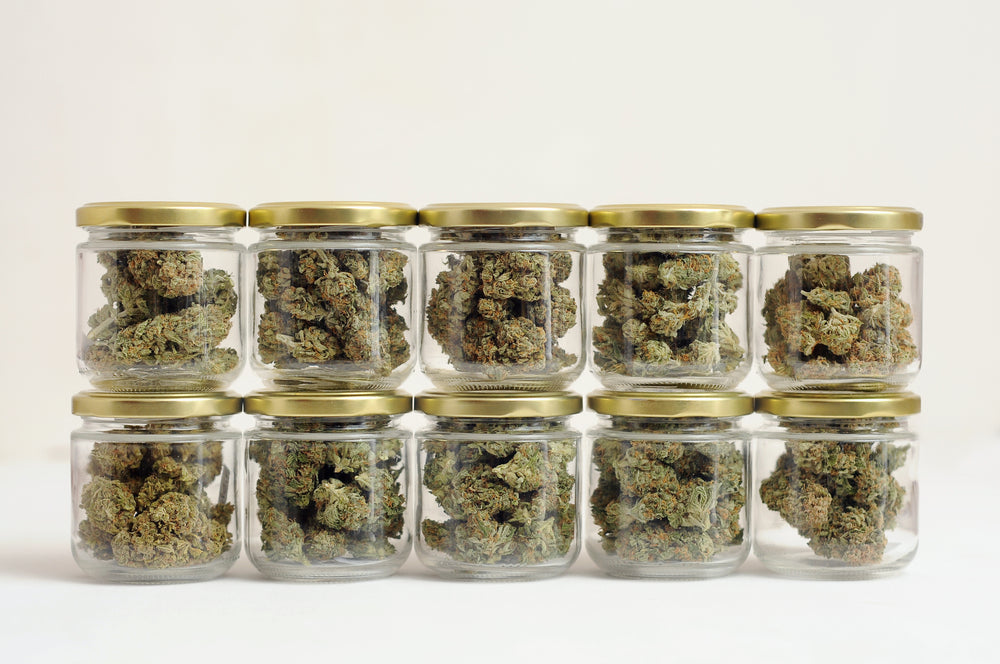 how to properly store your medical marijuana weed