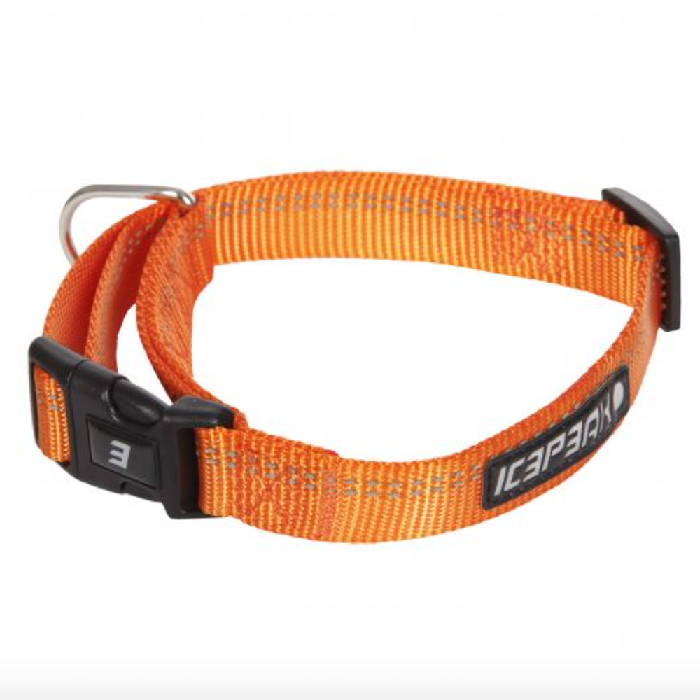 Hundehalsband orange - Winner - Van Muppen