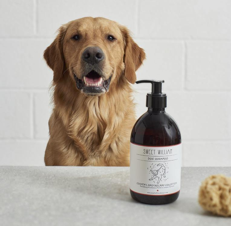 Hundeshampoo 500ml Dog wash, Shampoo - Van Muppen