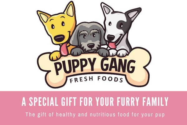 Puppy Gang Gift Card
