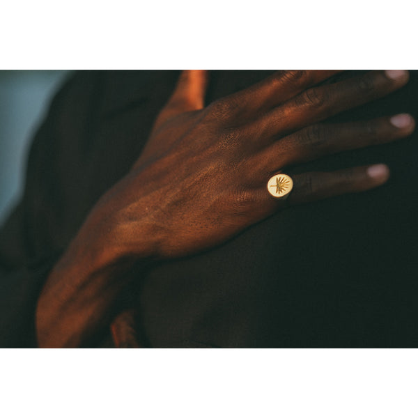 Signet Ring Tulum in 24K Gold plated - counterfitstudio