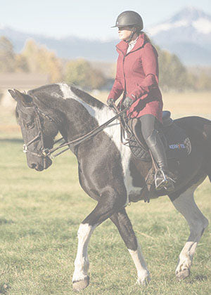 Shop Women Red and Brown Equestrian Clothing