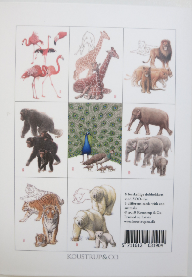 Zoo Notecards
