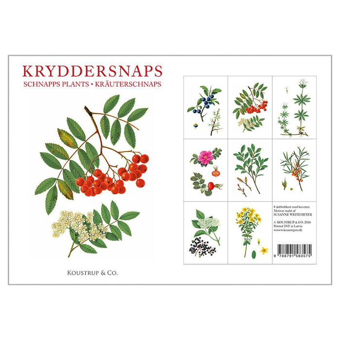 Schnapps Plants - 8 Cards