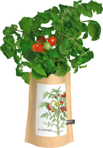 Potting Shed Creations Garden-in-a-bag Tomato