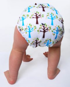 thirsties_duo_wrap_mason cloth diapers | Instinctive Parent | Pembroke MA
