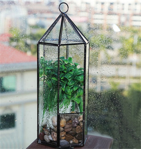 Hexagonal Hanging Glass Garden Terrarium, Plant Holder Terrarium House ,Geometric Terrarium For Indoor Gardening.