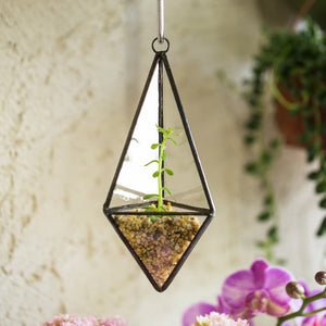 Wall Hanging Vase Decorative Small Geometric Clear Glass Terrarium Air Plant Flower Pot Rustic Vase for Wedding Decoration Gift