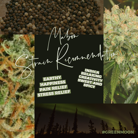 Mabon Cannabis Strain Recommendation