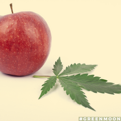 Apples and Cannabis Best Buds