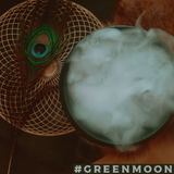 Peacock Feather - Green Moon Apothecary Ltd