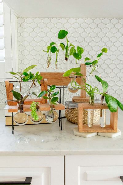 How To Choose The Right Propagation Station