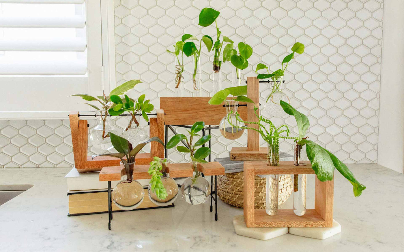 Best gifts for plant lover, houseplant hoarder, green thumb. Indoor plant gifts. Propagation stations and test tube planters. Cooper and Smith.