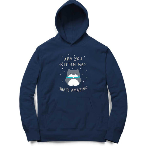 Are You Kitten Me Hoodie