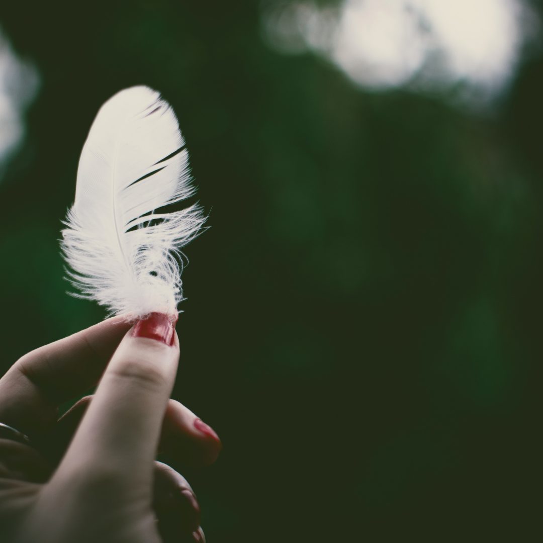 You see a lady's left hand is holding a white feather in the air and in the background are blurred trees. The lady's nails are painted red.