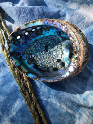 LARGE ABALONE SHELL / Smudge Bowl