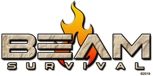 BEAM Survival