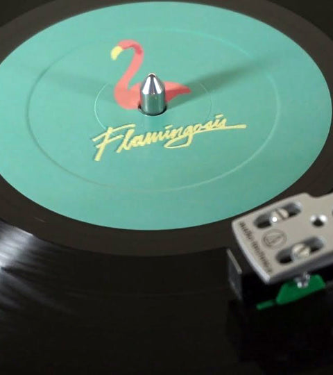 Recommended: Flamingosis