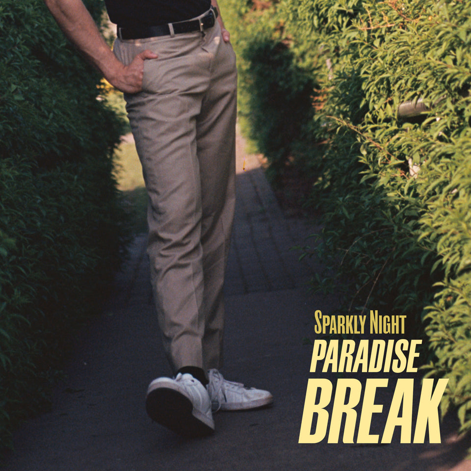Sparkly Night – Paradise Break -AotM July 2019-