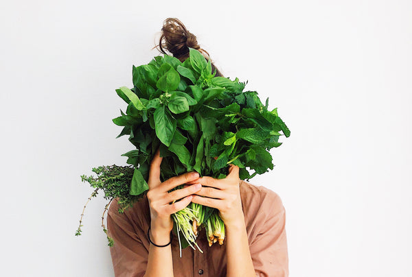 Facts about Mint and Basil that will keep you up at night