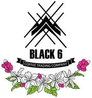 Black 6 Coffee Trading Co.