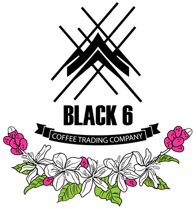 Black 6 Coffee Trading Co. logo