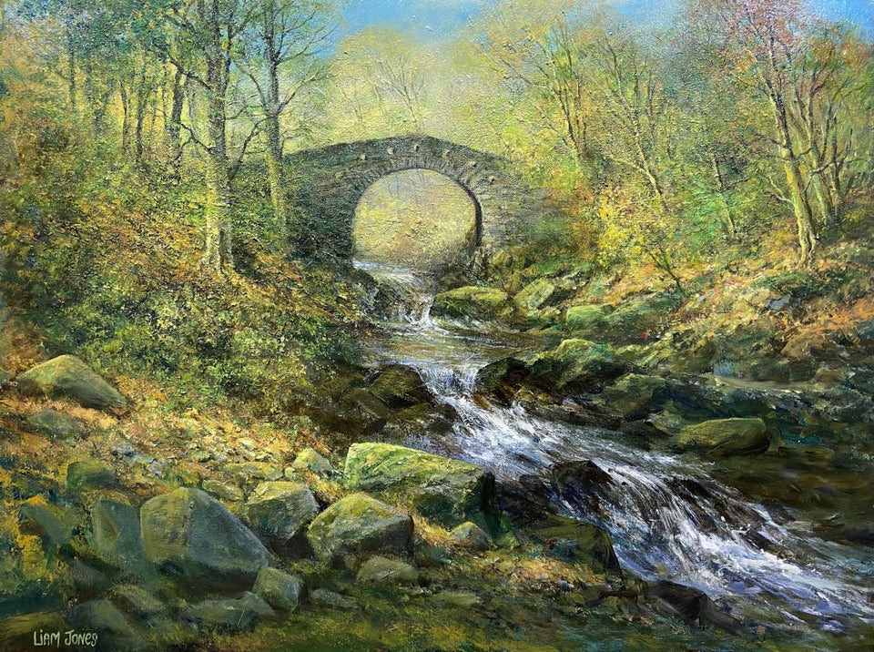 Autumn Foleys Bridge Tullymore Forest Park Co.down Original Artwork