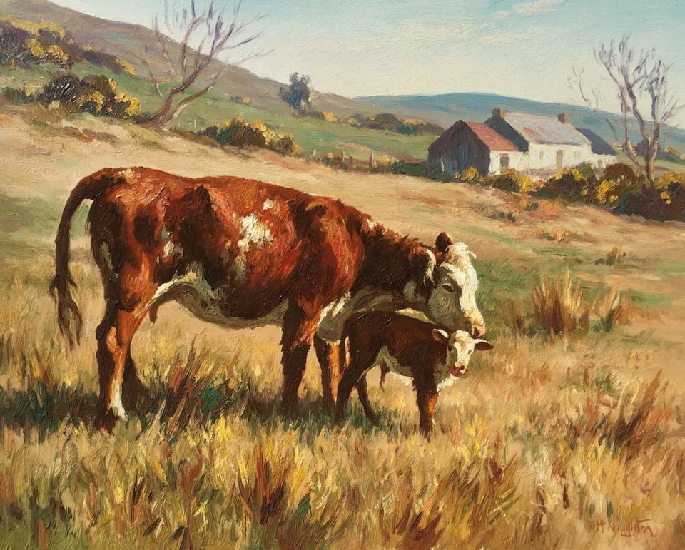 Cow With New Born by Donal McNaughton - Original Artwork