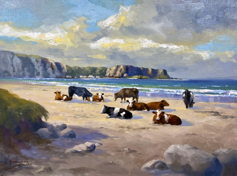 Cows On The Beach White Park Bay Co.antrim Original Artwork