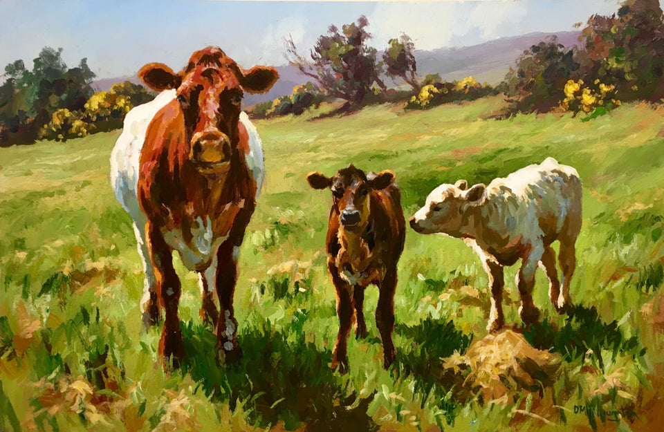 Curious Cow With Calves by Donal McNaughton - Original Artwork
