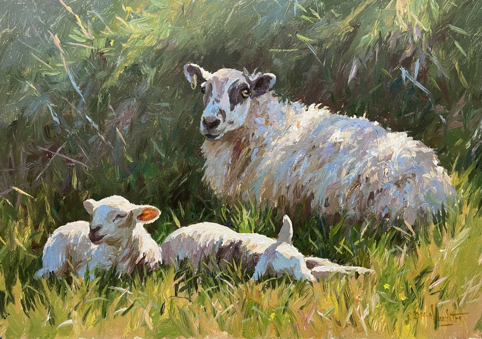 Ewe With Her Spring Lambs Original Artwork
