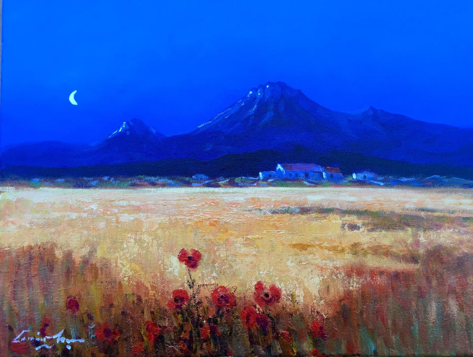 Moonlit Hayfield Connemara Original Artwork