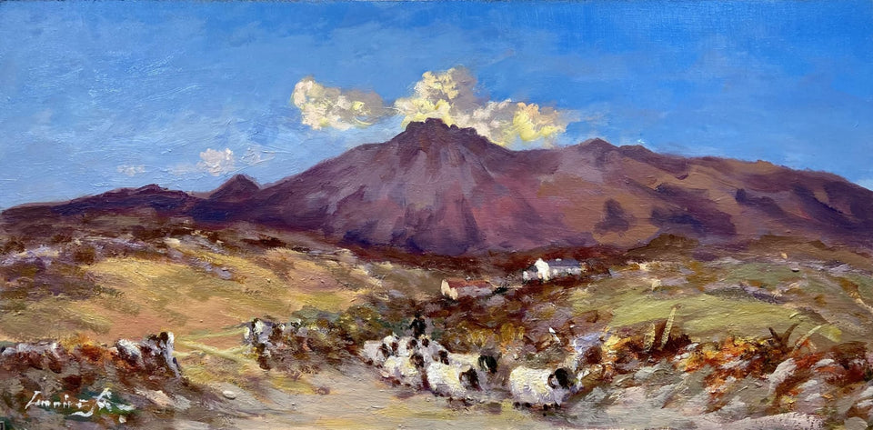 Moving Sheep In The Mournes Co.down Original Artwork