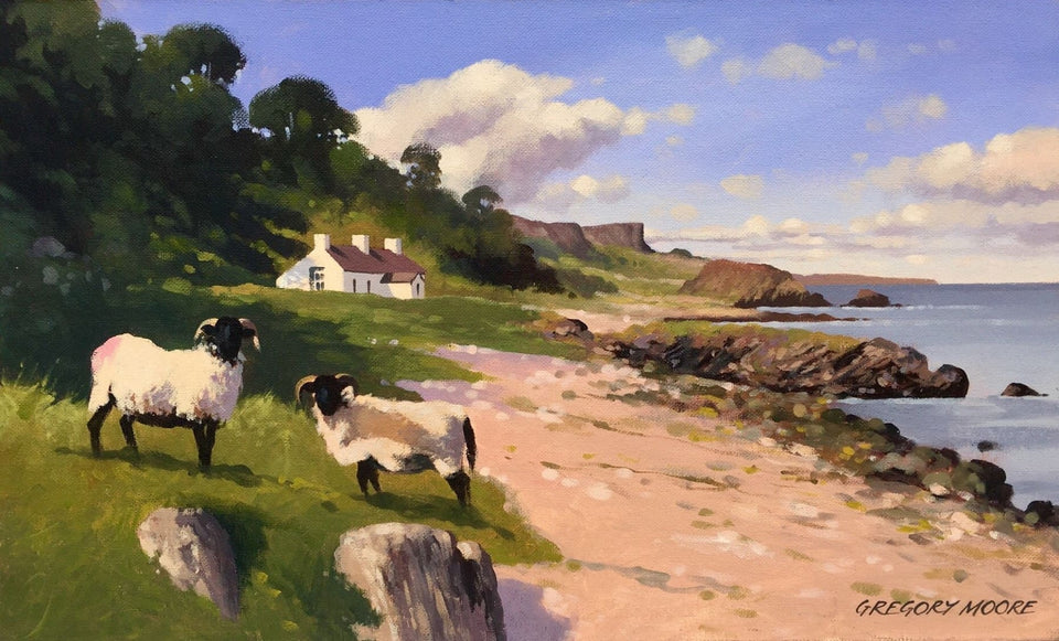 Sheep By Murlough Bay Co.antrim Original Artwork