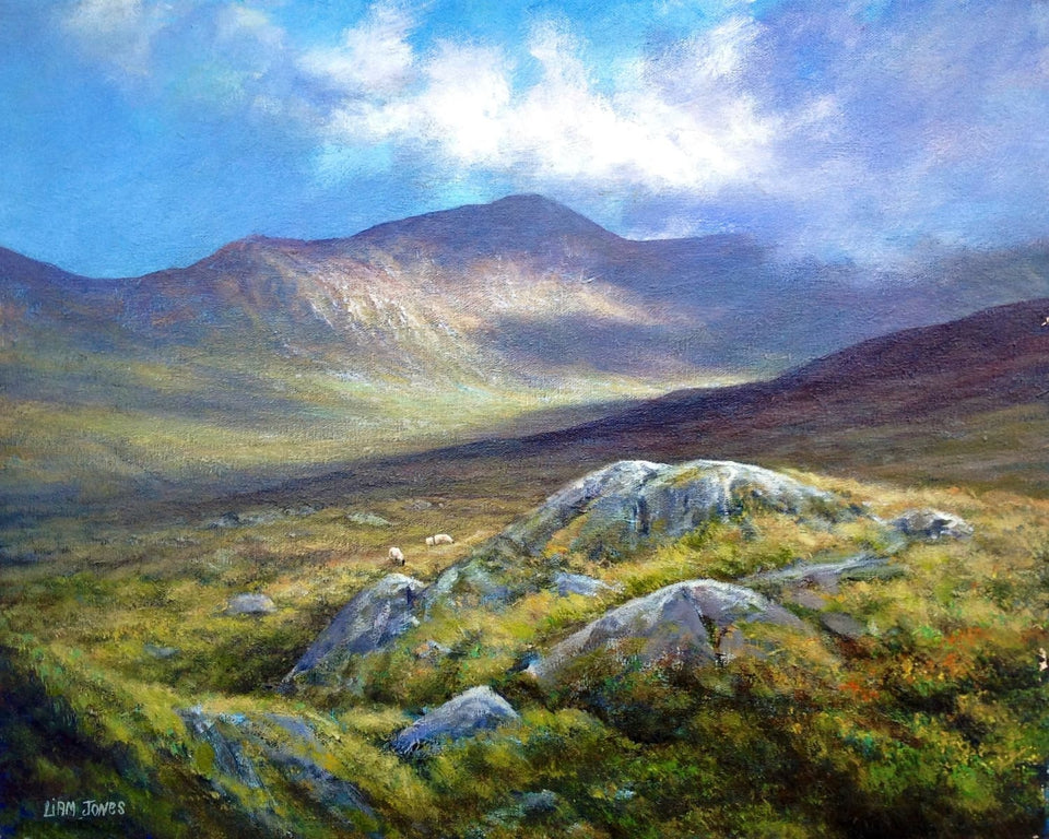 Sheep Grazing In The Mournes Original Artwork