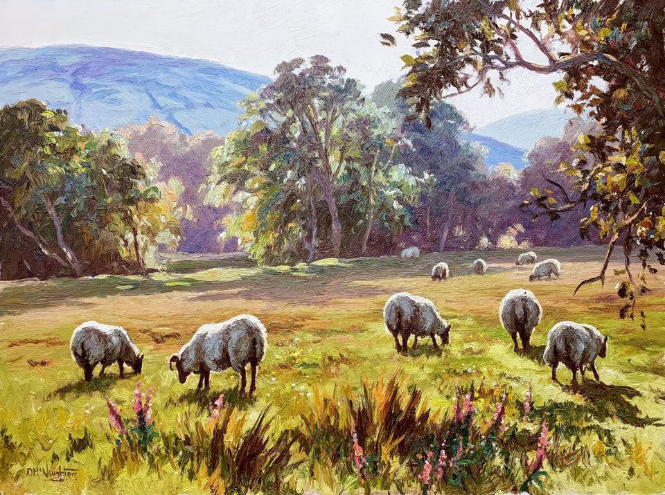 Sheep Grazing Near Knocklayde Co.antrim Original Artwork