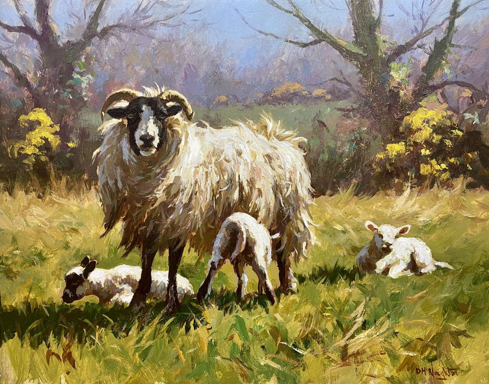 Sheep With Lambs Original Artwork