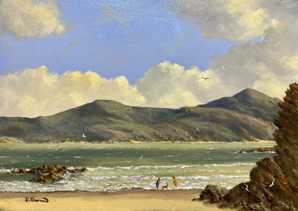 Summertime Near Marble Hill Co.donegal. Original Artwork