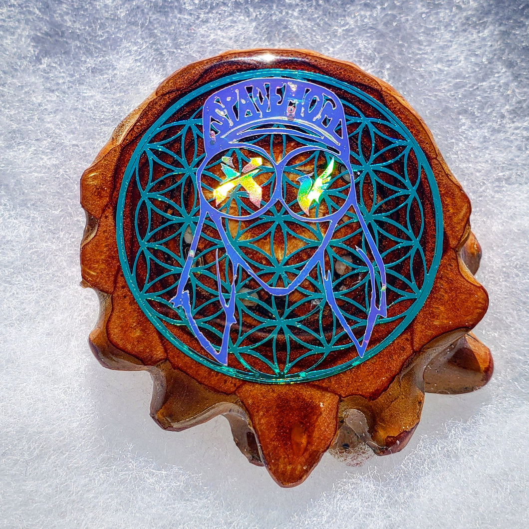 Rezz Illenium Exsicion over flower of life