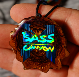 Bass canyon X