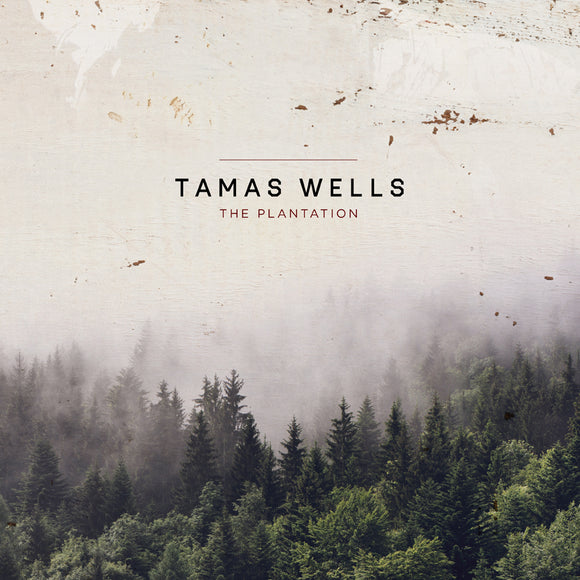 Tamas Wells - The Plantation